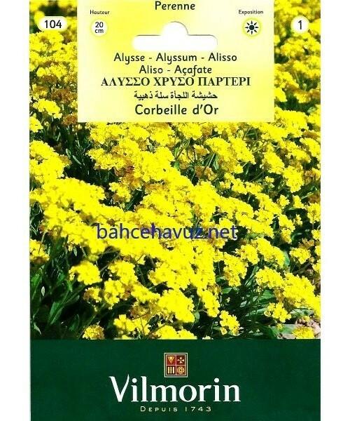 Vilmorin Alisyum Altın Sepet Çiçek Tohumu