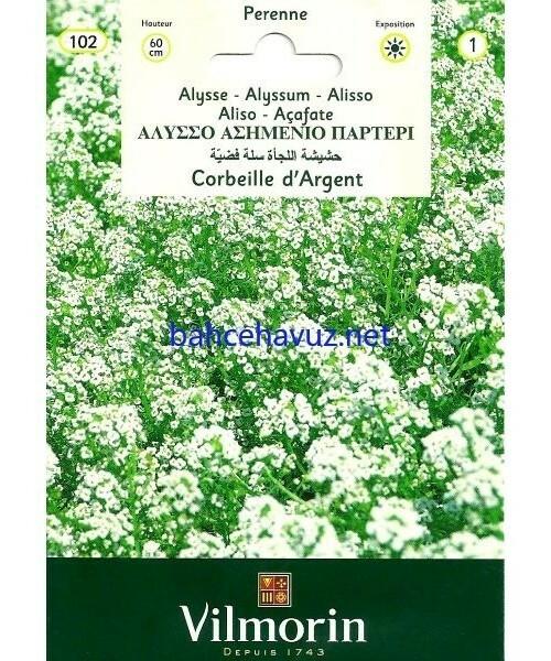 Vilmorin Alisyum-Ballıca Çiçek Tohumu
