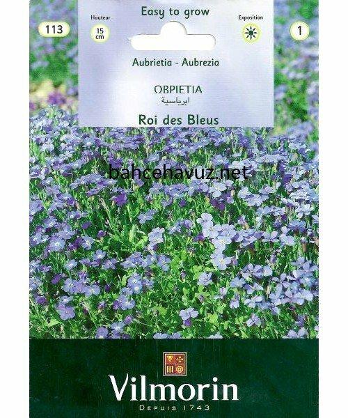 Vilmorin Mavi Obrizya Çiçek Tohumu