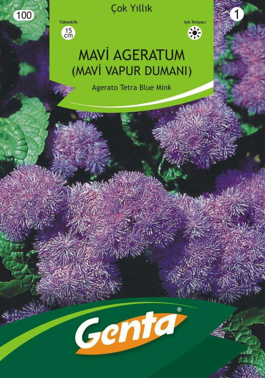 Genta Mavi Vapur Dumanı Çiçek Tohumu