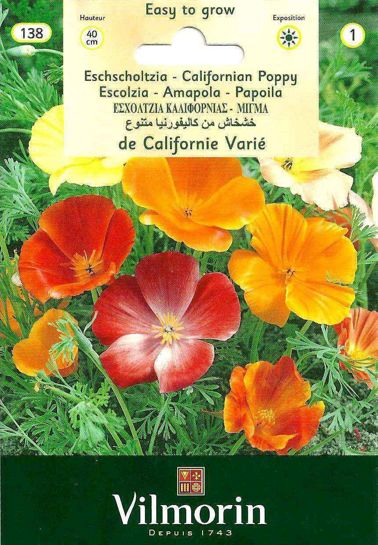 Vilmorin Acem Lalesi Çiçek Tohumu
