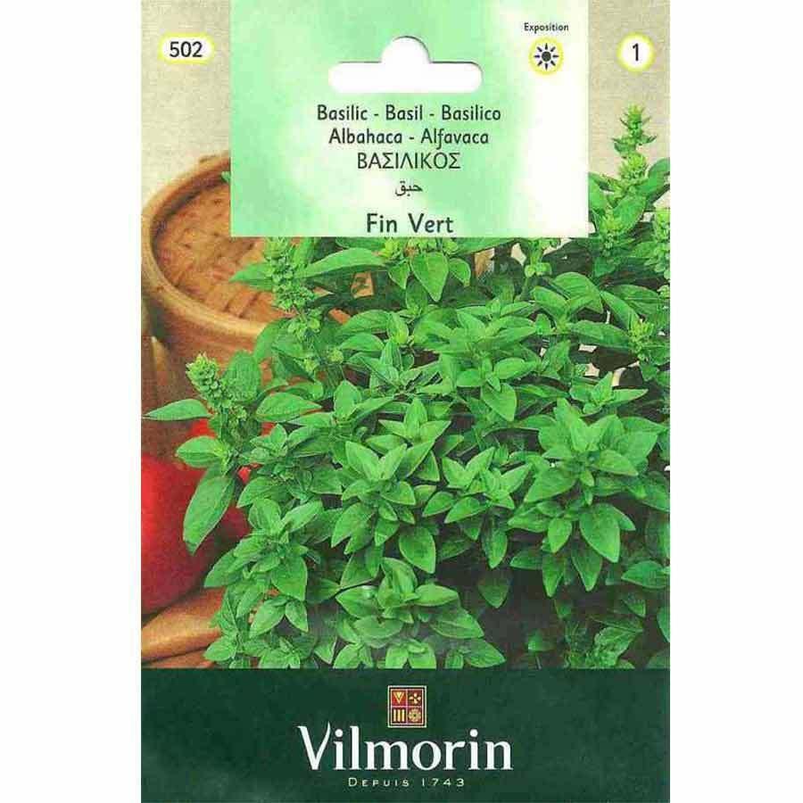 Vilmorin Küçük Yapraklı Fesleğen Tohumu