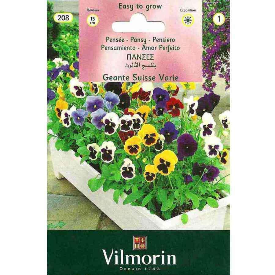 Vilmorin Karışık Alacalı Hercai Menekşe Çiçeği