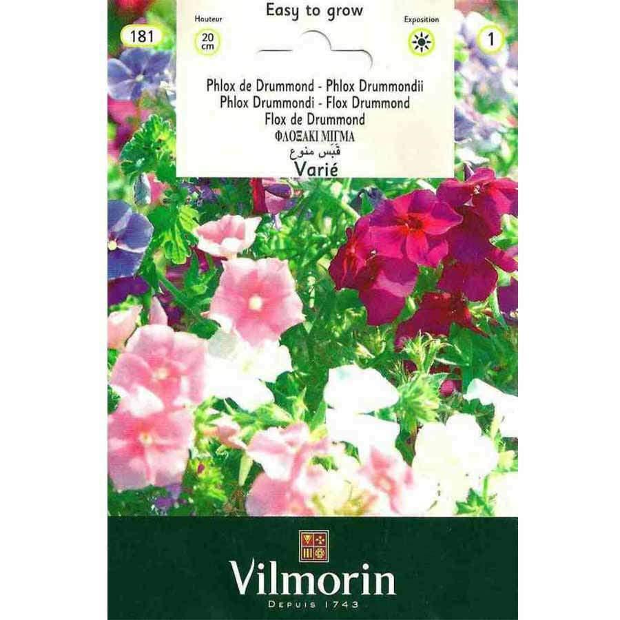 Vilmorin Karışık Renkli Alev Çiçeği