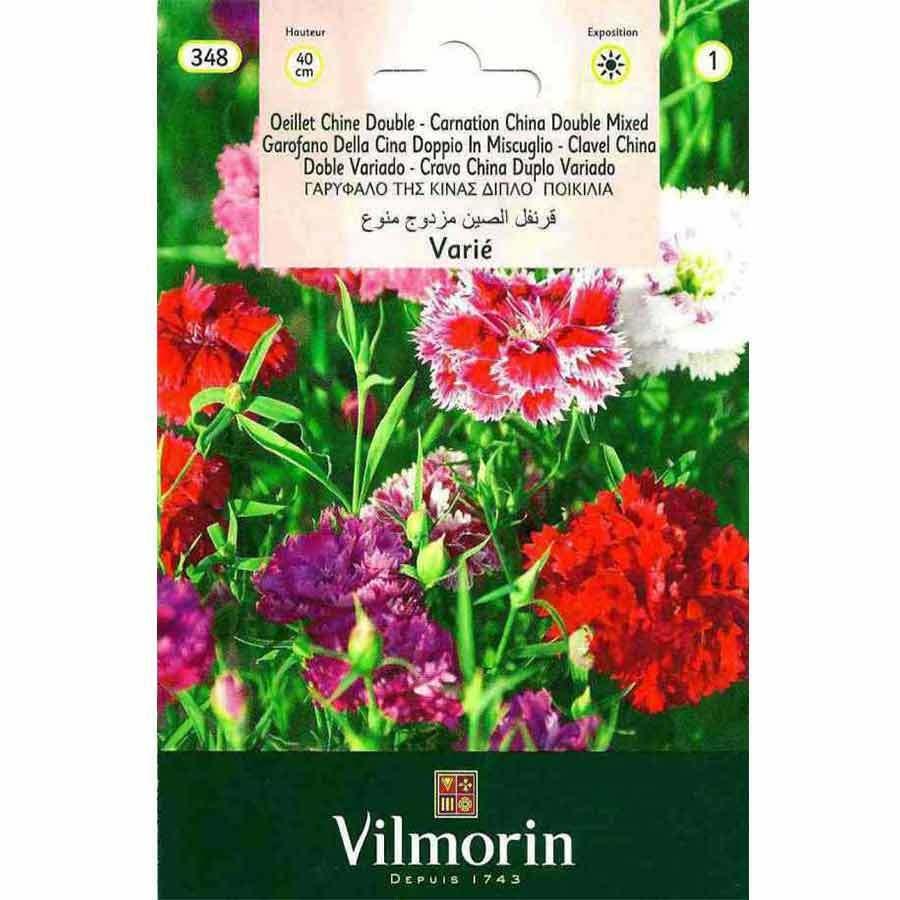 Vilmorin Karışık Renkli Çin Karanfili Çiçeği