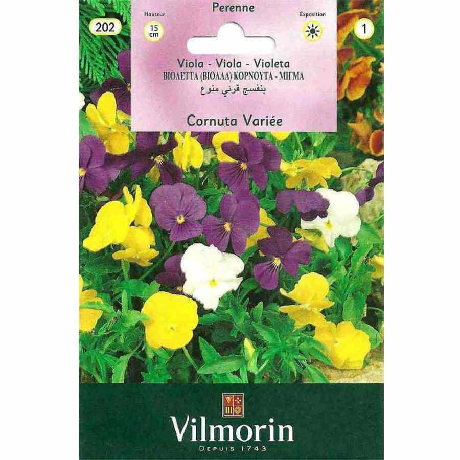 Vilmorin Karışık Renkli Hercai Menekşe Çiçeği