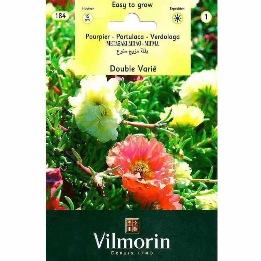 Vilmorin Katmerli İpek Çiçeği