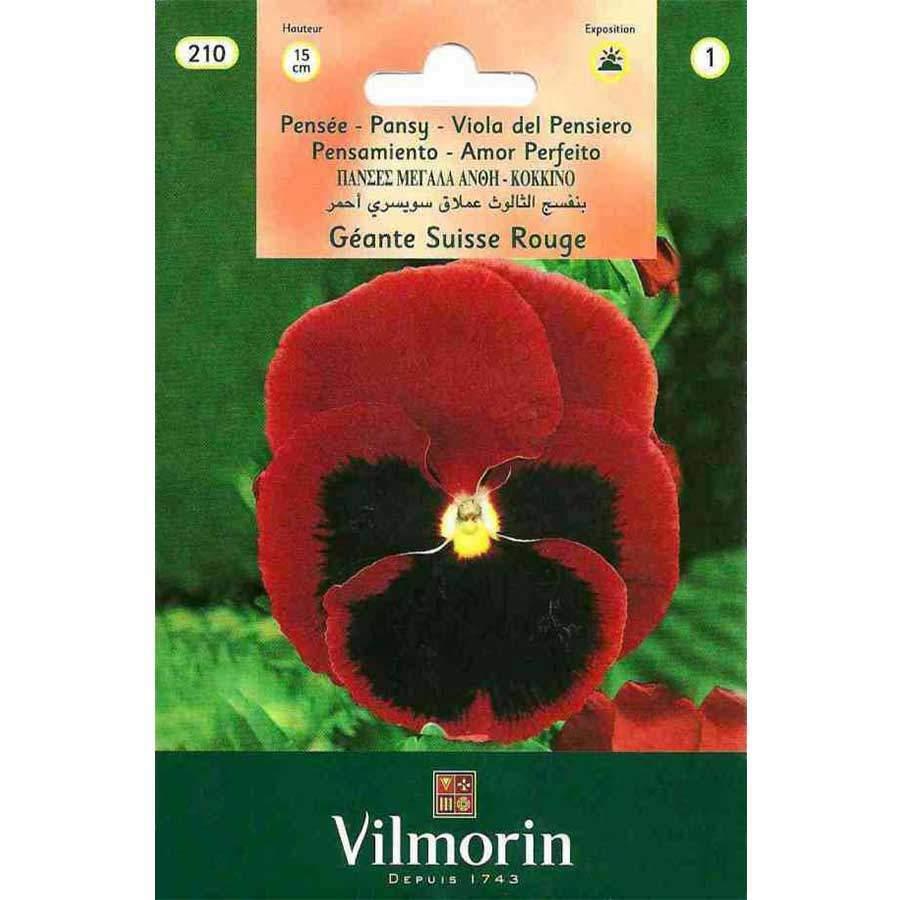 Vilmorin Kırmızı Alacalı Hercai Menekşe Çiçeği