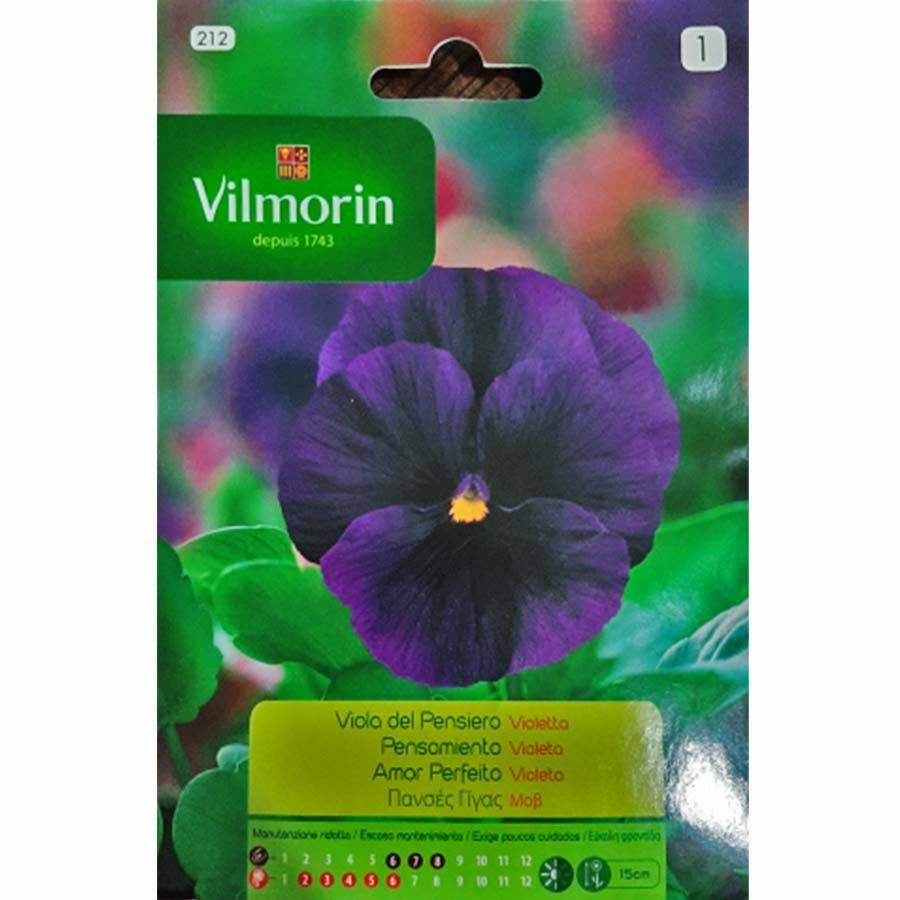 Vilmorin Mor Renkli Hercai Menekşe Çiçeği