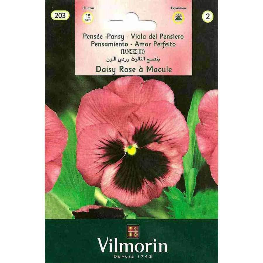 Vilmorin Pembe Alacalı Hercai Menekşe Çiçeği