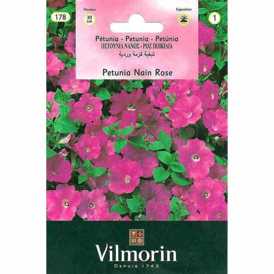 Vilmorin Pembe Renkli Kısa Petunya Çiçeği