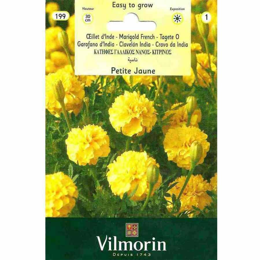 Vilmorin Sarı Renkli Kadife Çiçeği