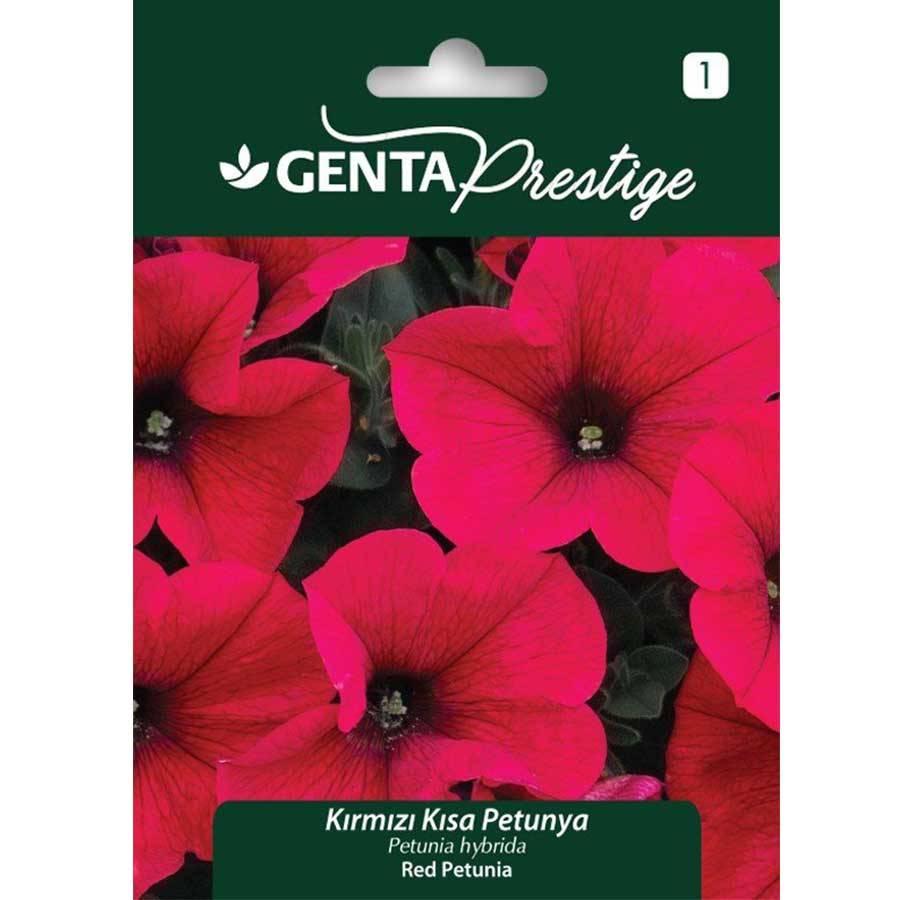 Genta Prestige Kırmızı Kısa Petunya Çiçeği